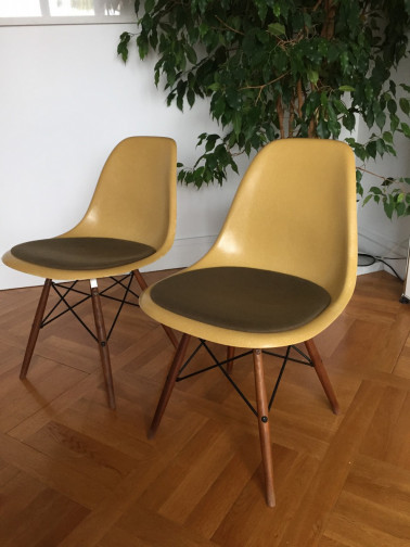 2 x Chaises Eames Miller DSW ocre,Herman Miller,Eames